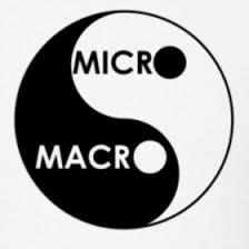 La macroéconomie a-t-elle besoin de micro-fondations ?